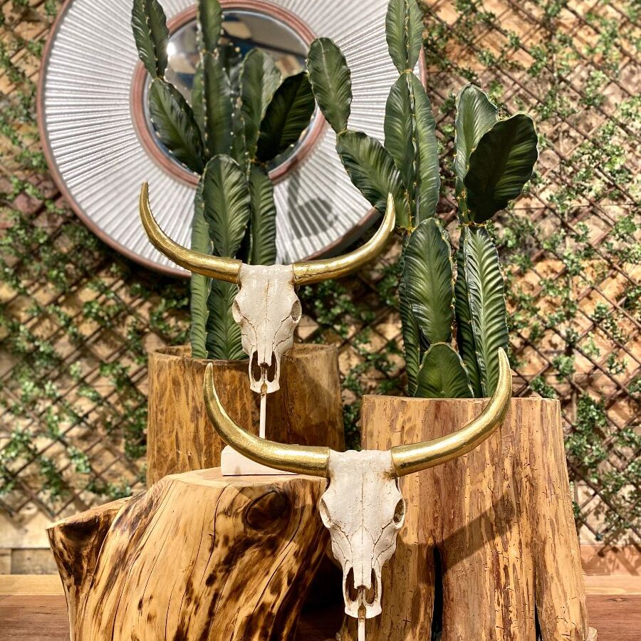 Natural Interior Design Elements for Your Southwestern Home